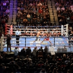 Which combat sport is more engaging, Boxing or MMA?
